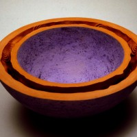 Double-walled Bowl