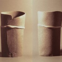 Two Vases Forms